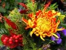 Flower Power - Blumenladen