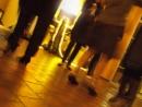 Salsa Exclusive Tanzreisen